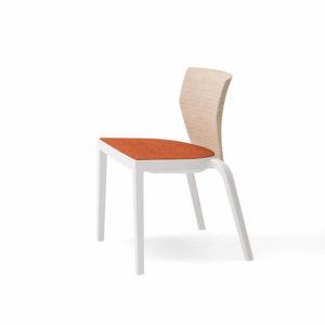 The Bi Chair
